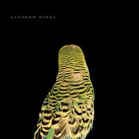 Andrew Bird - album
